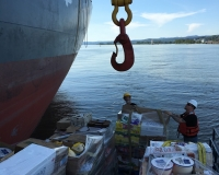 triumph VI working with cargo